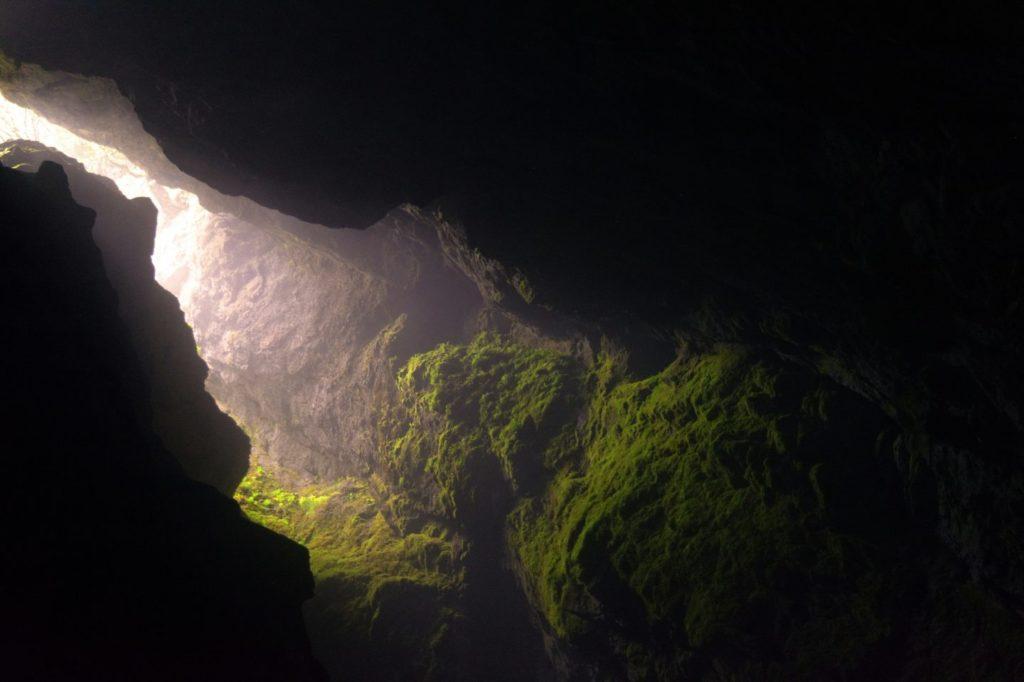 opening-of-rock-sharing-light-lush-green