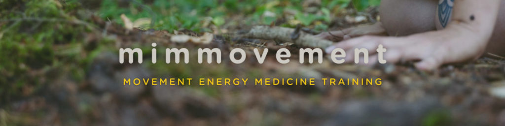 mimmovement-movement-energy-medicine-training